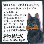 『神を見た犬』(ブッツァーティ/関口英子訳)